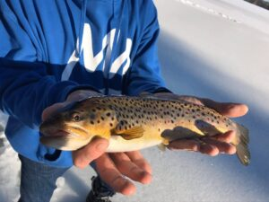 Ice Fishing in Maine 13