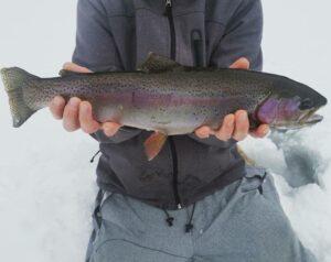Ice Fishing in Maine 14