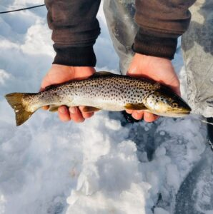 Ice Fishing in Maine 9